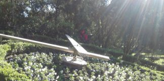 Reloj Floral del Parque
